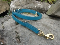 Turquoise Adjustable Lead